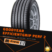 GOODYEAR EFFICIENTGRIP PERFORMANCE 2 195/65R15 91H