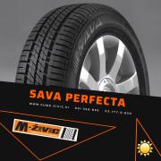 SAVA PERFECTA 155/65/14 75T